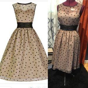 Lindy Bop Mocha & Black Swing Dress